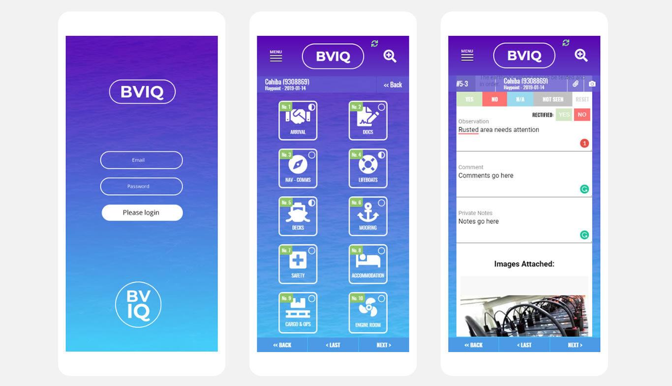 WebApp-BVIQ