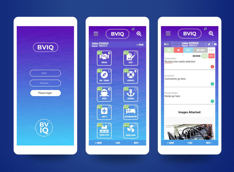 BVIQ Maritime Bulk Vessel Inspection Questionnaire WebAPP